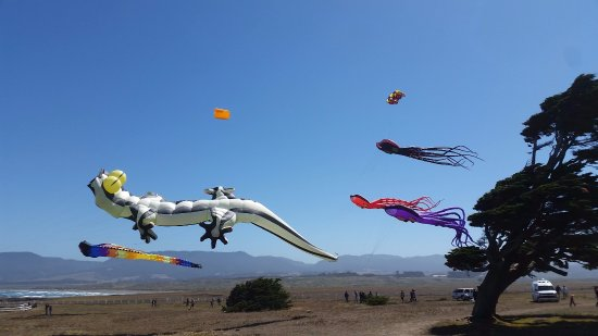 Point Arena, CA: Wind & Whale Celebration (check our website for dates)