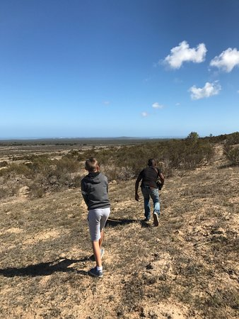 Yzerfontein, South Africa: On the hunt!