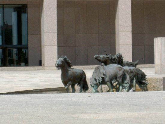 Irving, TX: Mustangs of Las Colinas