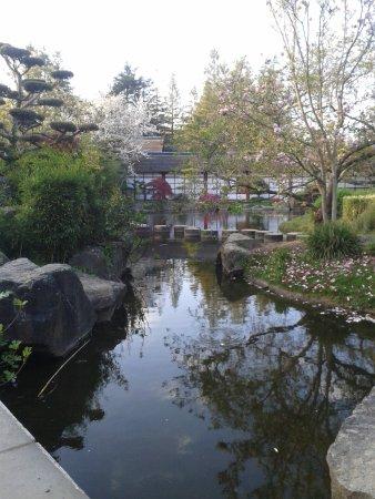 Jardin japonais photo de jardin japonais nantes tripadvisor for Jardin japonais nantes
