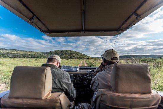 Welgevonden Game Reserve, South Africa: Safari Game Drive