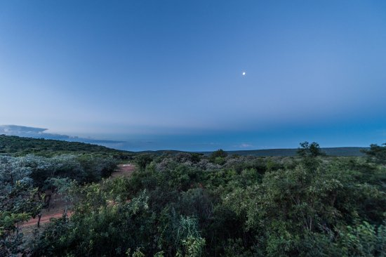 Welgevonden Game Reserve, Afrika Selatan: Evening view from the Lodge Deck