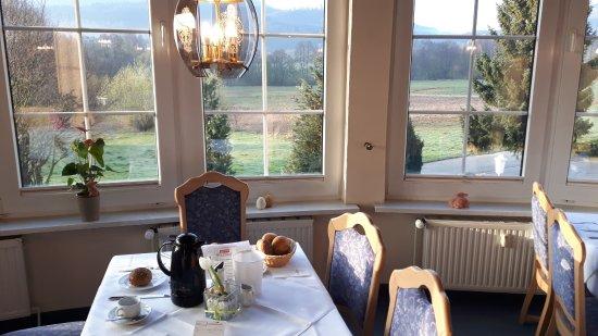 Sonnenhotel Wolfshof: Uitzicht vanuit restaurant