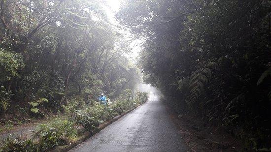 Poas Volcano National Park, Costa Rica: 20170324_104716_large.jpg