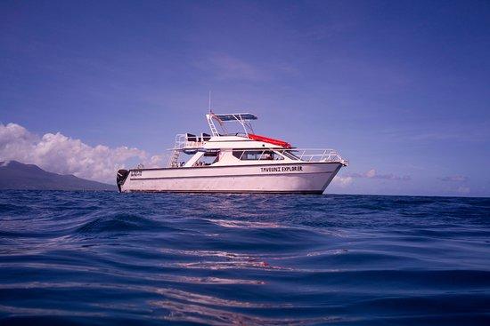 Paradise Taveuni: Taveuni Explorer