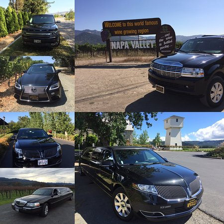 Apex Limousine Transportation: Apex Transportation & Wine Tours
