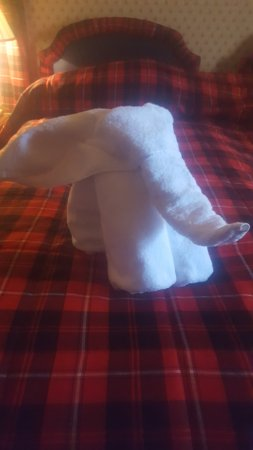 Culloden House: little towel elephant :)