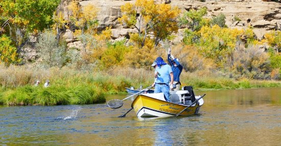 Born N' Raised Guide Service on the San Juan River