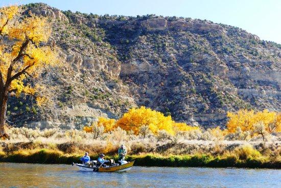 Navajo Dam, Nuovo Messico: Fall Fly Fishing San Juan River