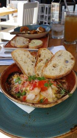Delicious Picture Of Brio Coastal Bar And Kitchen