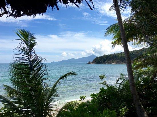 Rimba Resort: photo1.jpg