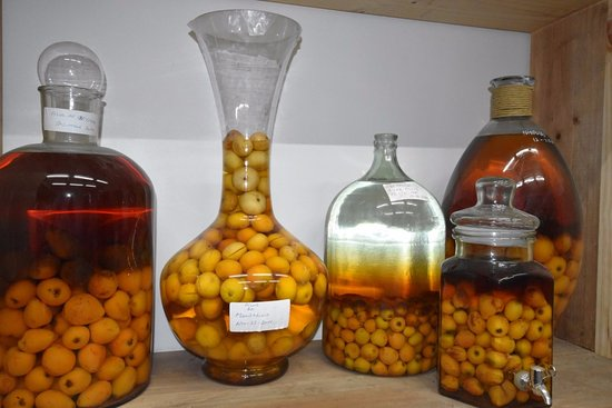 Bodegas RE: Experimenting with different fruits to make liqueurs