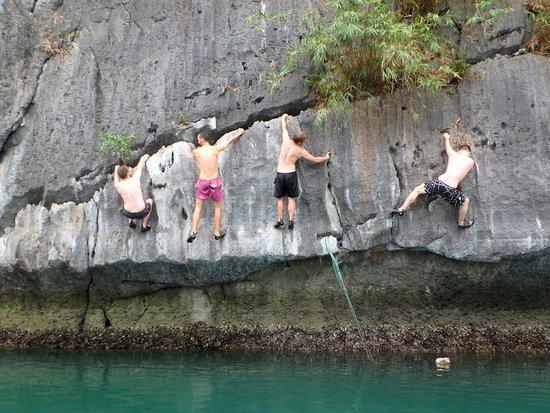 Cat Ba Climbing Review