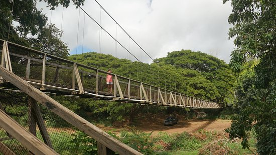 Swinging Bridge Picture Of Kiki A Ola Menehune Ditch