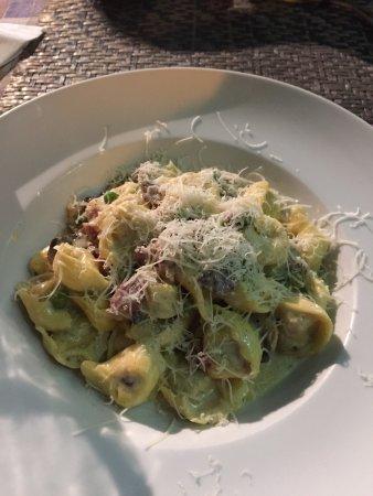 Al Dente : Tortellini, Pasta Carbonara and chocolate dessert