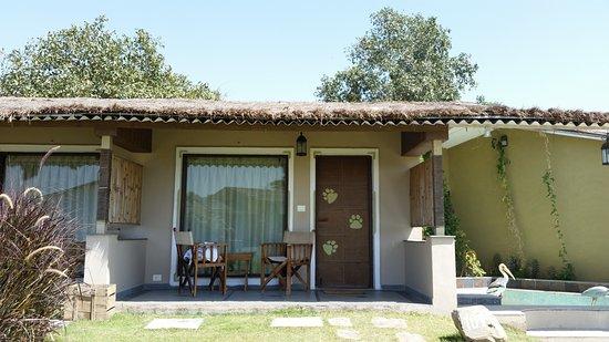 Image of: Safari Style Furniture In Asiatic Lion Lodge Quaint Safari Style Rooms Furniture Picture Of Lodge