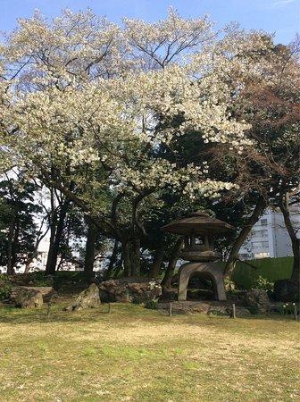 Kyu Iwasaki-tei Teien: photo0.jpg