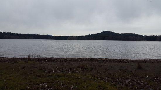 Elk/Beaver Lake Regional Park: 20170320_170819_large.jpg