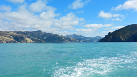 Coast up Close: Beautiful Akaroa harbour