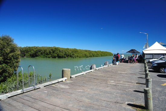 The Wharf Coffee House and Bar: Feed the sea birds and watch the local boats come and go.