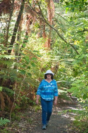 RAPAURA Watergardens: a gentle relaxing stroll