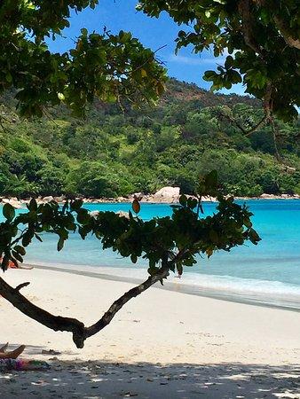 Praslin Island, Seychelles: photo1.jpg