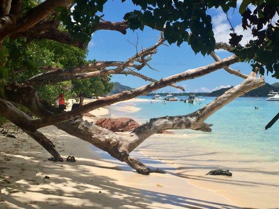 เกาะพราสลิน, เซเชลส์: photo1.jpg