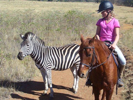Horseback Africa