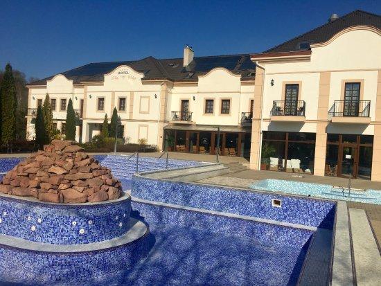 Hotel Villa Volgy: The empty pool...