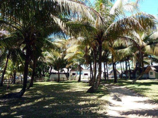 Mahavelona, Μαδαγασκάρη: Foulpointe: Au Gentil Pêcheur - Les bungalows de l'hôtel.
