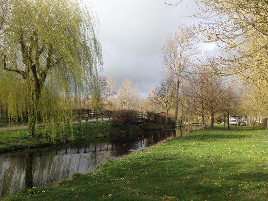 Aigrefeuille D'Aunis, France: Une partie du paysage environnant