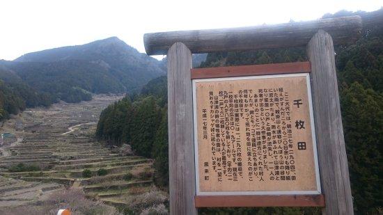 Yotsuya no Semmaida Photo