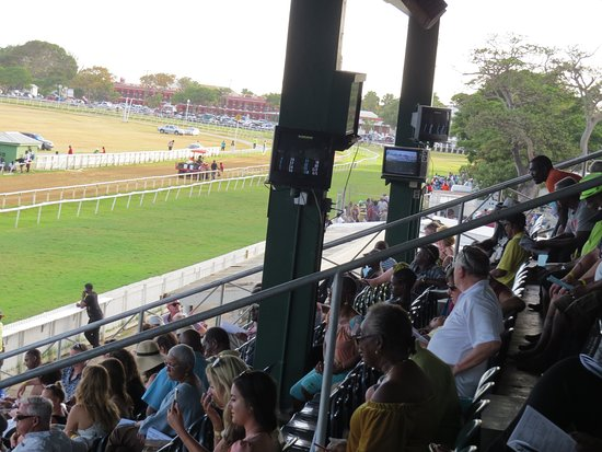 Garrison Savannah - Barbados Turf Club: View of the grandstand