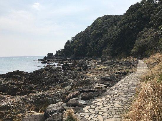 Tsumekizaki : photo3.jpg