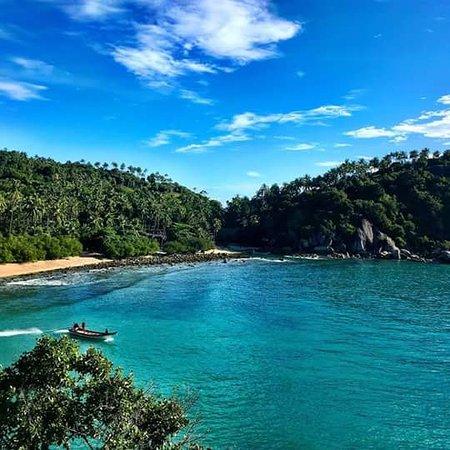 The Sanctuary Thailand: FB_IMG_1491087088631_large.jpg