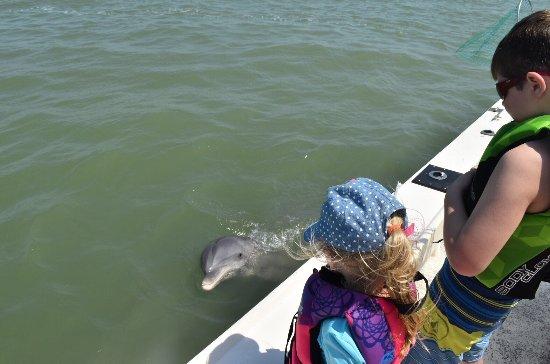Santiva Saltwater Fishing: photo1.jpg