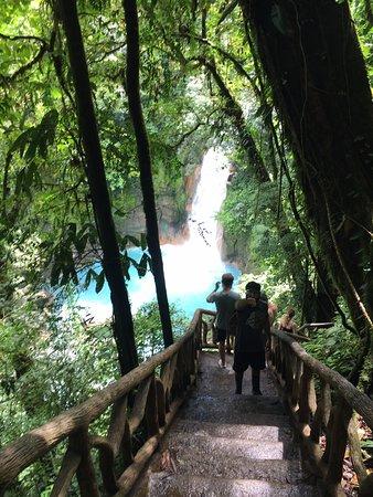 Tenorio Volcano National Park, Costa Rica : steps leading to the waterfalls