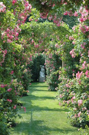 Rose Arbor at Rough Point