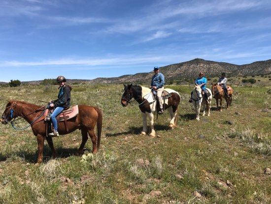 M Diamond Ranch: photo0.jpg