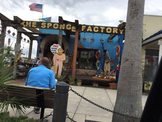 Spongeorama: photo0.jpg