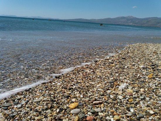 Attica, Grecia: Spiaggia con sassolini