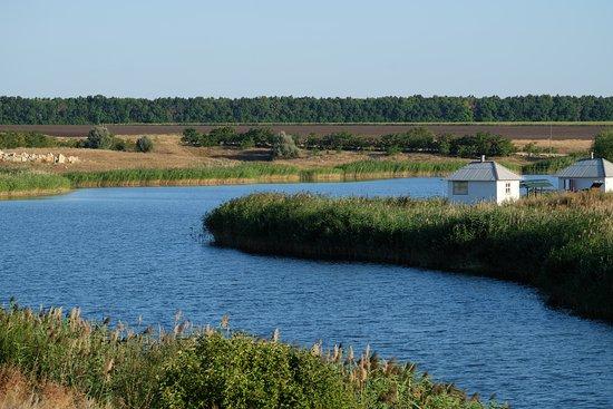 Lomovskoi Natural and Landscape Park