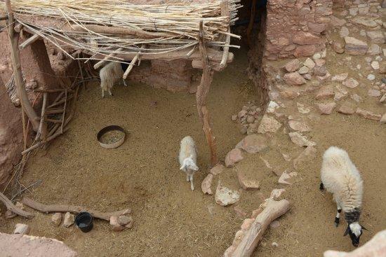 El Kelaa, Marruecos: corrales