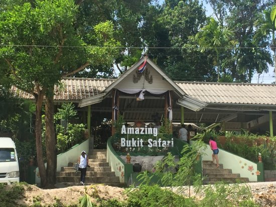 Amazing Bukit Safari: photo0.jpg