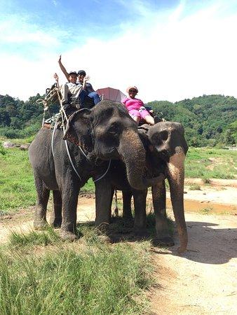 Amazing Bukit Safari: photo1.jpg