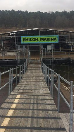 Greers Ferry, AR: Shiloh's main walkway!