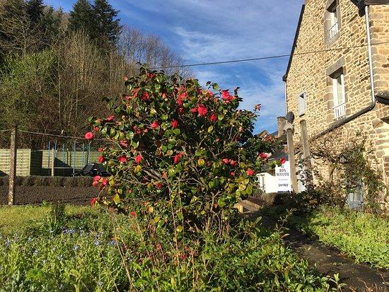 Saint Marcan, France: photo4.jpg