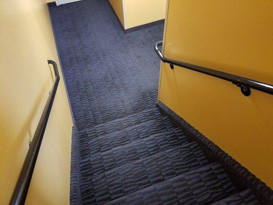 Belleville, MI: clean and carpeted stairwells