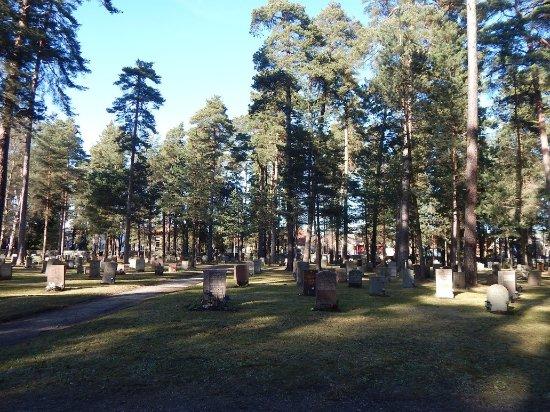 Skogskyrkogården : тихие аллеи
