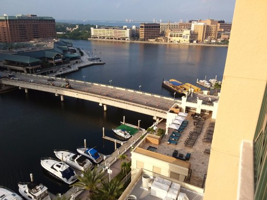 Tampa Marriott Waterside Hotel Marina Bridge To Harbor Island Beyond Davis Is